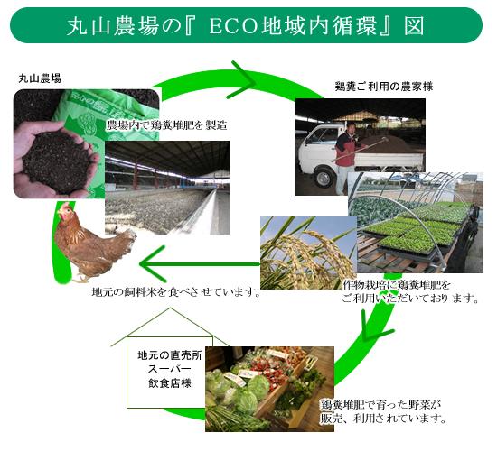 地域内エコ循環図